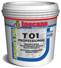 T 01 PROFESSIONAL